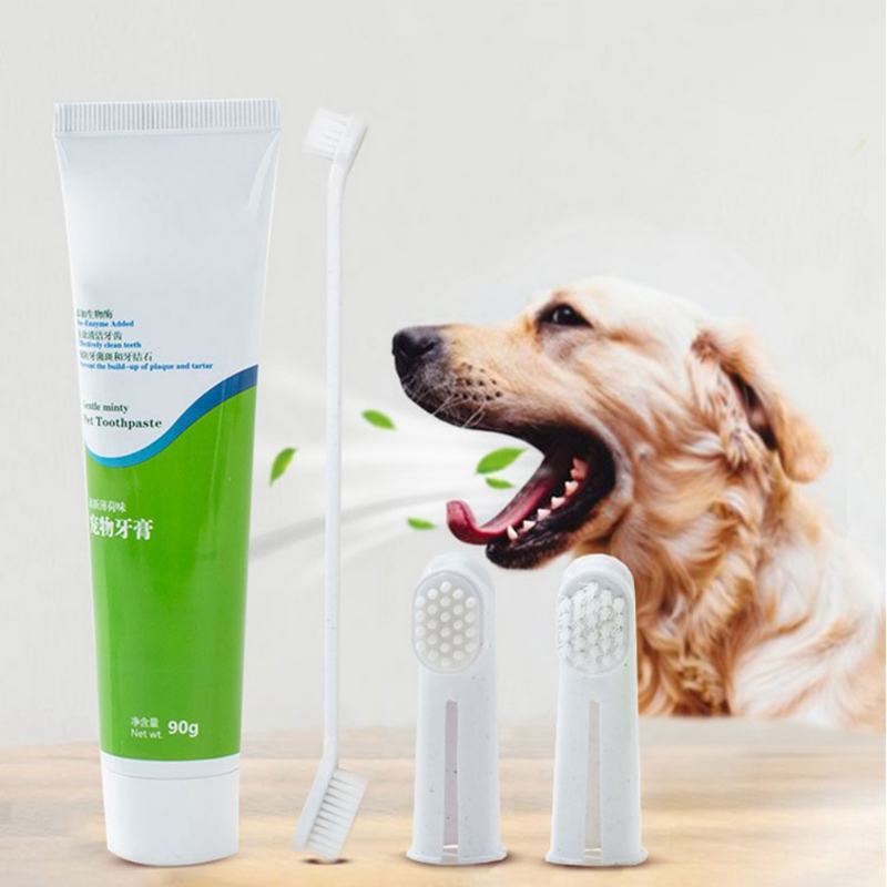 Pet Toothpaste Set Fun Dog Toothpaste Toothbrush 4 Piece Set Cleaning Supplies Tool Edible Dog Toothpaste Beef Flavor