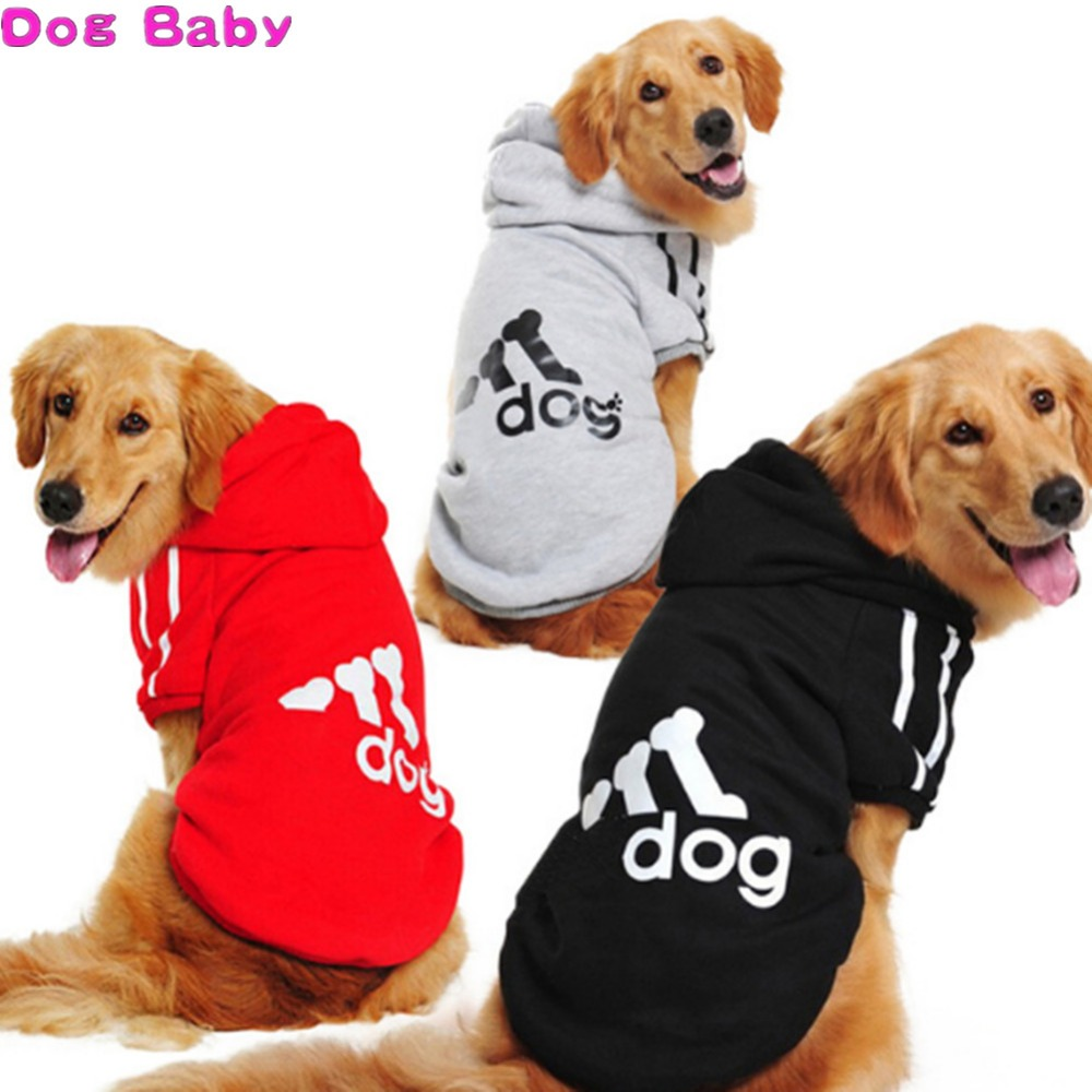 Coat, Golden, Red, Gray, Sportswear, Dog