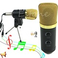 1PC New Pro Audio Dynamic USB Condenser Sound Recording Vocal Microphone MIC