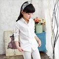 Crianças Dos Desenhos Animados Menina Criança Camisa Casual Blusas Padrão Meninas blusa de Renda Meninas Do Bebê Roupas de Outono Cores Doces Blusa para Menina