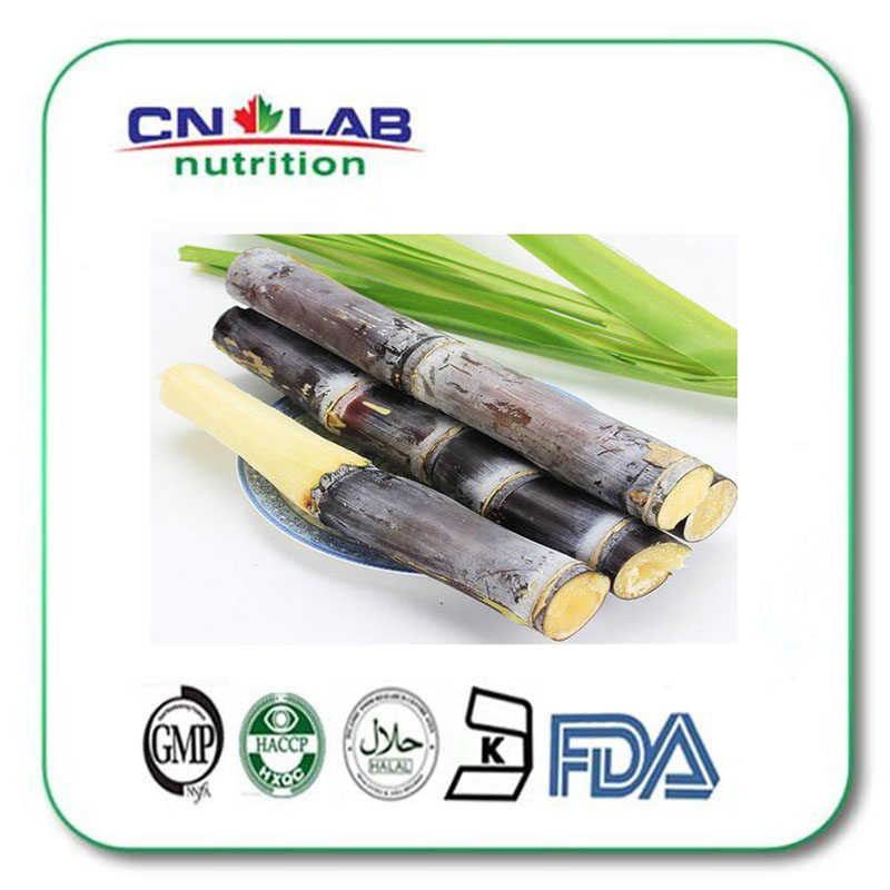 Manufacturer Supply 100% pure Natural Sugar Cane Extract Policosanol 98%  Octacosanol 90% 1000g/lot pure natural radix sophorae flavescentis extarct kuh seng extract 100g lot