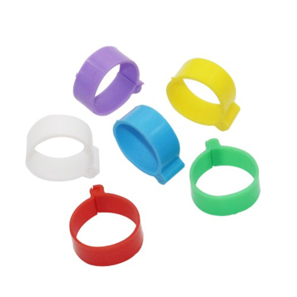 25mm Poultry foot ring chicken duck Goose birds Feeding supplies 6 Colors Buckle type Clip rings Farm equipment 30 Pcs