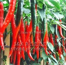 500 Red line redpepper seeds DIY Home Garden Vegetable Plant very hot