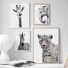 Черно Белое Животное Жираф Зебра Слон Wall Art Холст Картины Nordic Плакаты И Отпечатки Настенные