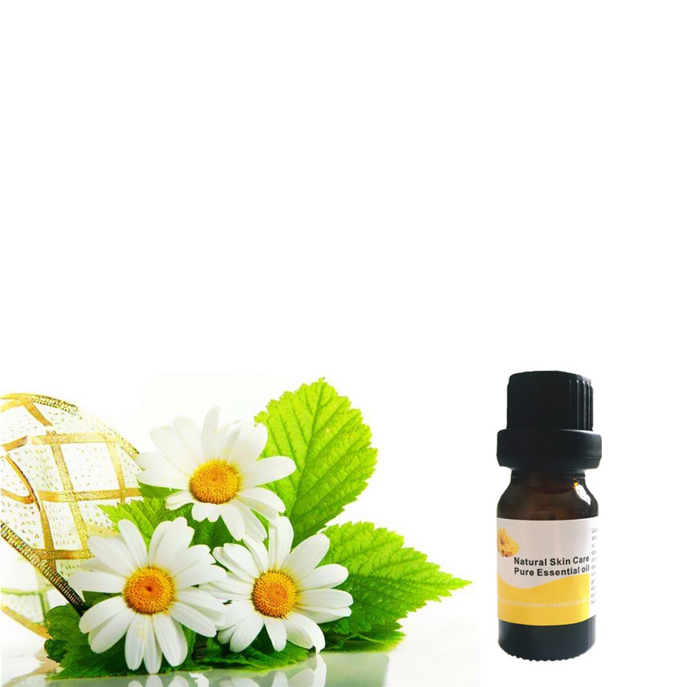 Galleria fotografica Potent Effect Slimming Firming Chrysanthemum essential oil for Lose Weight Thin Hips