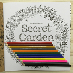 New 2017 secret garden coloring book 12 the root color pencil adult handdrawn antistress graffiti painting.jpg 250x250