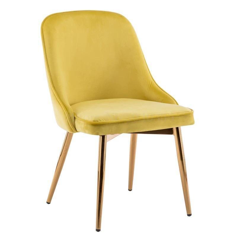 Скандинавский светильник роскошный стул для столовой сетка красный стул Макияж дизайн ногтей Металл домашний спальня стул Кофейня стул - Цвет: VIP 3