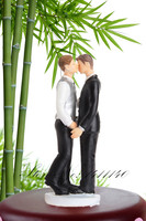 Gay Couple Wedding Cake Topper Gay Grooms / Gay Lesbian cake topper figurines two women / two men topper free shipping
