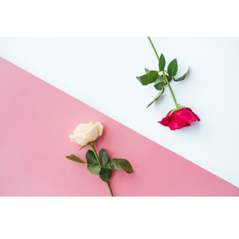 Panneau de toile de fond photographique en PVC à effet mat double face coloré pour fond de photographie