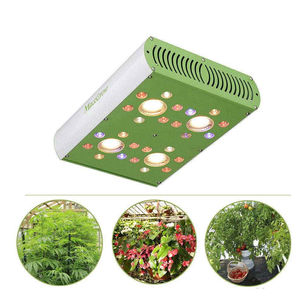 450W 900W CREE LED Grow Light Full Spectrum 3000K COB Grow Lamp With UV IR Double Switches Daisy Chain Design For Indoor Plants
