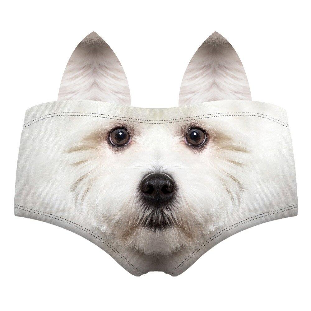 55120 white terrier wiz back