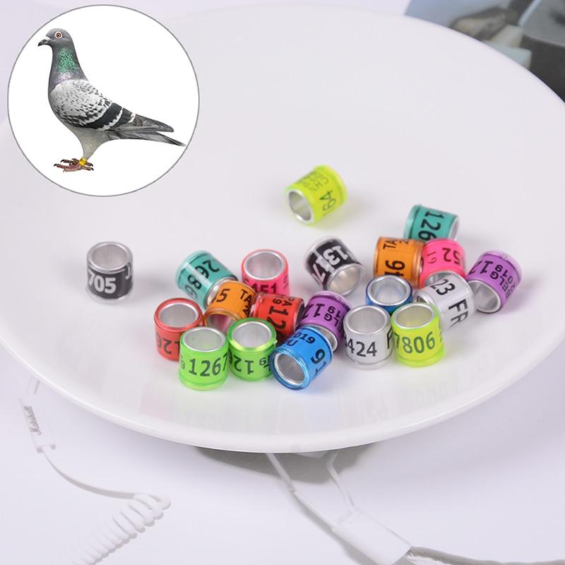 Leg-Rings With Al-Gb Pigeon Training-Supplies For Dove-Bands Identify Plastic Aluminium