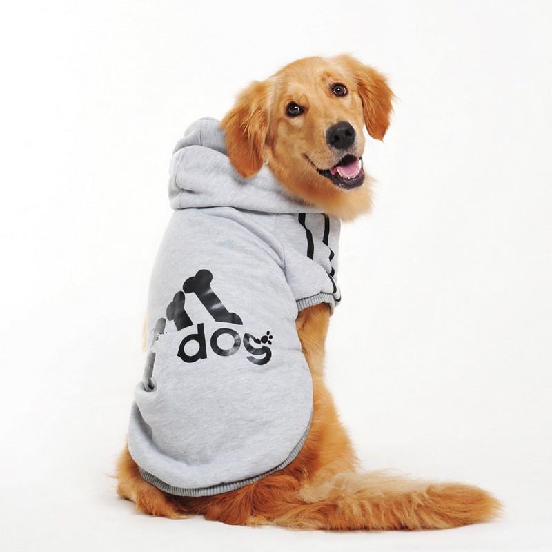 Roupa para Cachorro | Roupa Pequeno ao Extra Grande | Frete Grátis