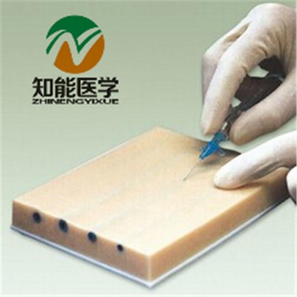 BIX-HS15-1 LV Lnjection Training Pad(Big) Lnjection Model WBW357 linvel lv 8081 6 1