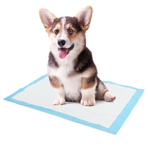 Image 5 - Super Absorbent Pet Diaper Dog Training Pee Pads Disposable Healthy Nappy Mat For Cats Dog Diapers Cage Mat Pet Supplies
