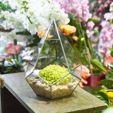 Modern Polyhedron Diamond Teardrop Shape Geometric Wall Mount Glass Planter Plant Succulent Flower Pot Hanging Glass Terrarium