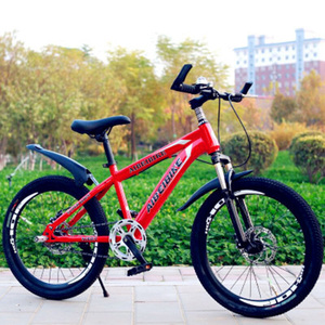 Adult Mountain Bike Single Speed Double Disc Brake Shock Absorber Student Mountain Bike 20 Inches