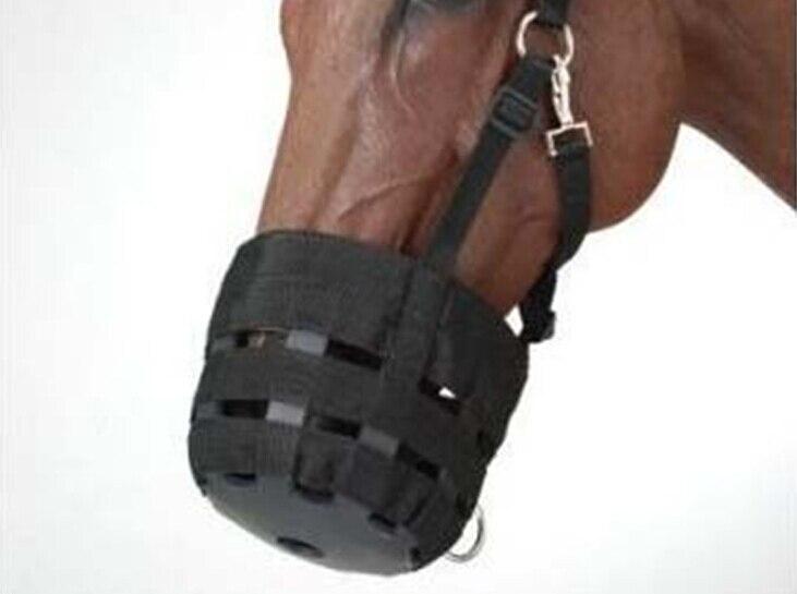 Équipement de chevalier de couverture de bouche Anti-morsure de museau de cheval équestre de qualité supérieure