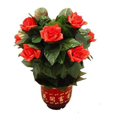 Télécommande floraison fleur Bush 10 fleurs, tours de magie de scène, Party Magic Show, Fun, accessoires, mentalisme, comédie