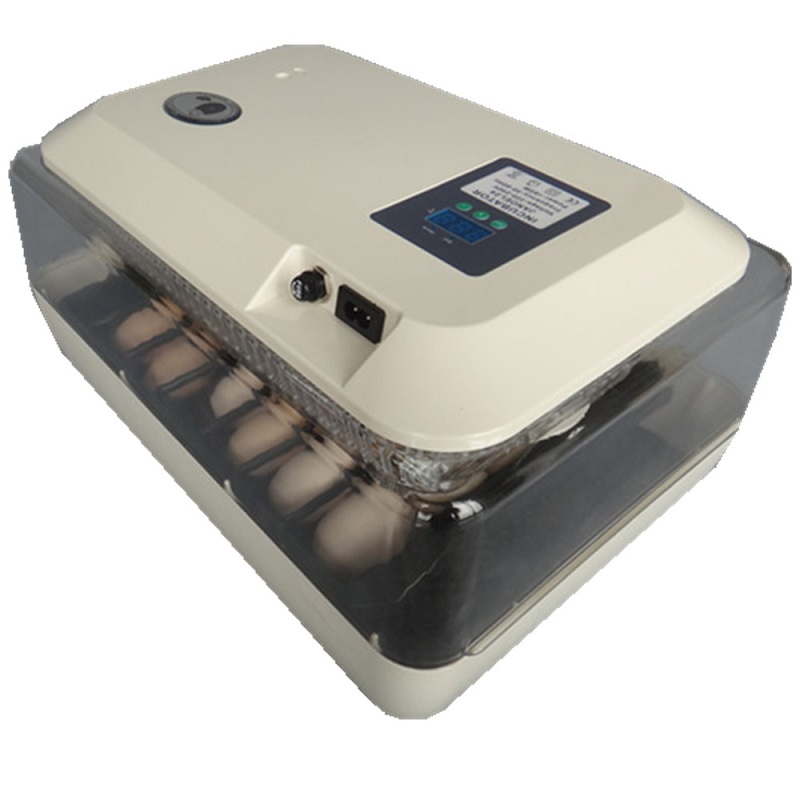 24 цифровой ясный инкубатор с поворотом яиц, точный контроль температуры для утиных птиц, инкубация куриных яиц + фонарик в подарок - 2