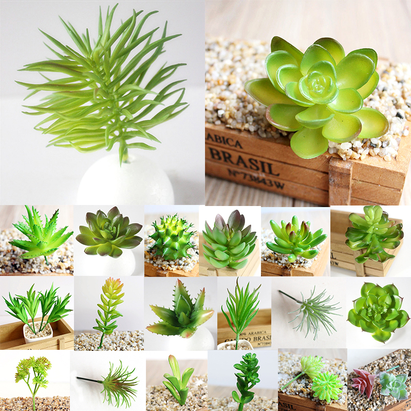 Simulation Miniature Office-Decor Succulents Garden Home Plastic 1PC Diverse DIY Delicate