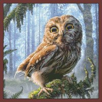 Needlework DIY DMC 14CT Unprinted Cross Stitch Sets For Embroidery Kits Jungle Owl Counted Cross Stitching