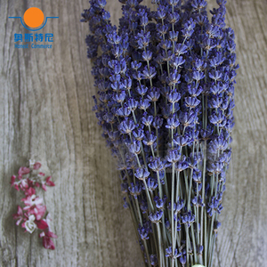 Image 4 - 100g dried natural flower bouquets dried natural Lavender flower bouquet&lavender flower Bunches