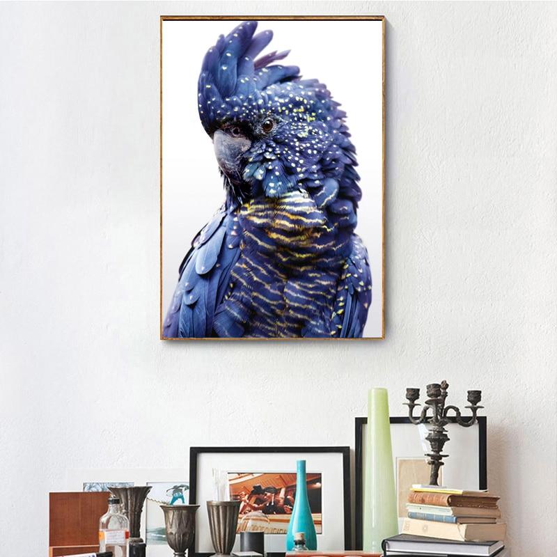 3 13 45 De Réduction Moderne Australien Perroquet Impression Noir Cockatoo Toile Art Mural Oiseau Bleu Marine Affiche Pour Salon Décor à La