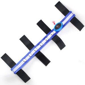 Image 2 - 馬術馬ヘッドストラップ用 led 乗馬馬ナイトフラッシュベルト馬術ハーネス交換可能と CR2032 バッテリー Q