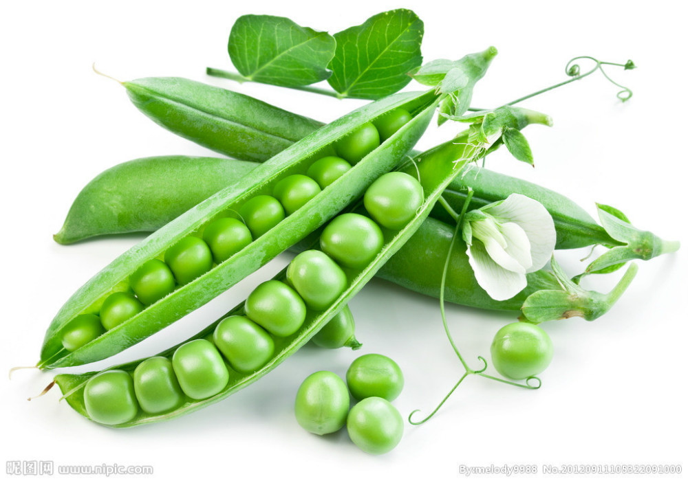 Vegetable fruit sweet pea seeds Snow peas seed Bonsai plants Seeds for home & garden 15seeds free shipping