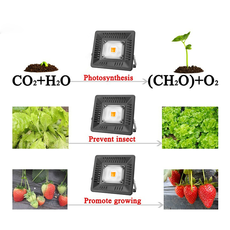 Image 5 - Full Spectrum Lamp LED Growing Light 50W 100W 150W AC 110V 220V High power Outdoor Waterproof for Greenhouse hydroponics seeding-in LED Grow Lights from Lights & Lighting