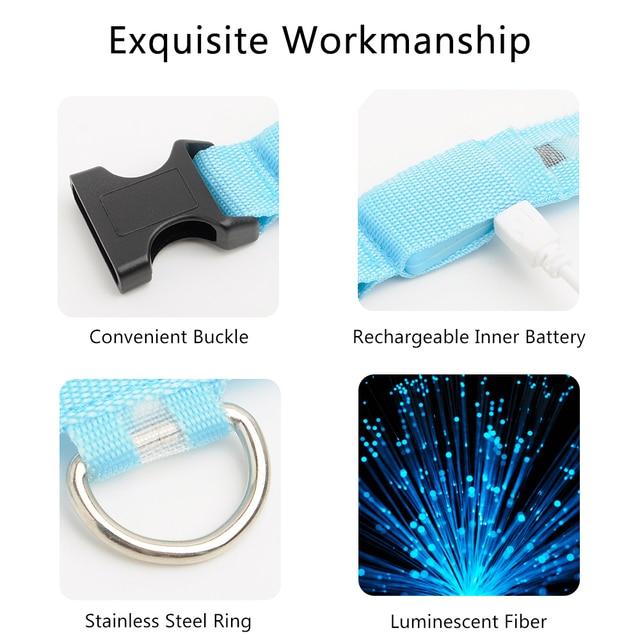 USB Charged LED Dog Collar 8