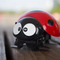 Intelligent Remote Control Insect Ladybug RC Cars Robot DIY Kits Radio Cartoon Toys Remote Truck Toys Best Gift For Kids RC Toys