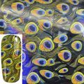 Fashion Beauty Peacock Feathers Pattern Nail Art Transfer Foil Sticker for Nail Tip Craft Manicure Decoration GL27