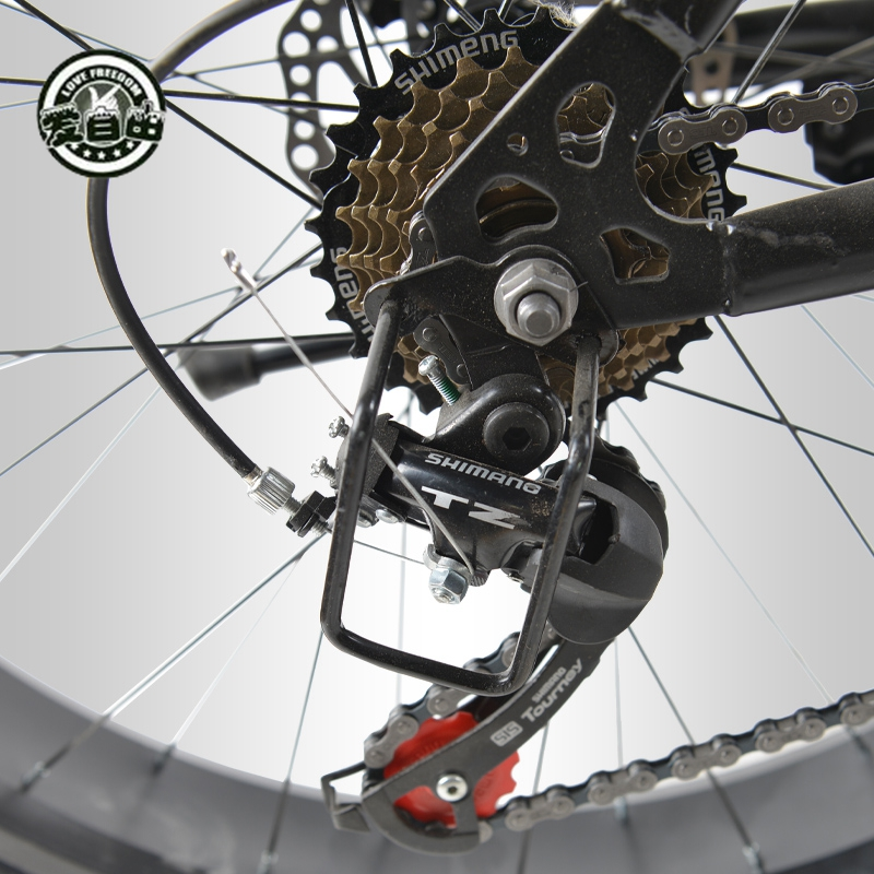 Love Freedom 7/21/24/27 Speed Mountain Bike 26 * 4.0 Fat Tire Bikes Shock Absorbers Bicycle Free Delivery Snow Bike 6