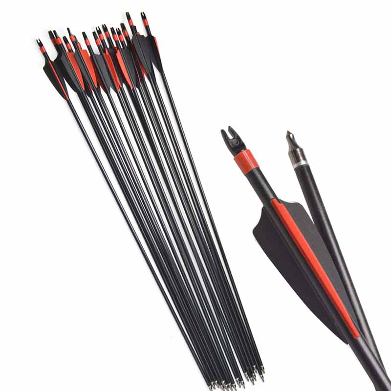 12pcs Archery Fiberglass Arrows And Arrow Quiver Spine 500 With Rubber Feathers For Hunting Sports Shooting Practice Accessories in Bow Arrow from Sports Entertainment