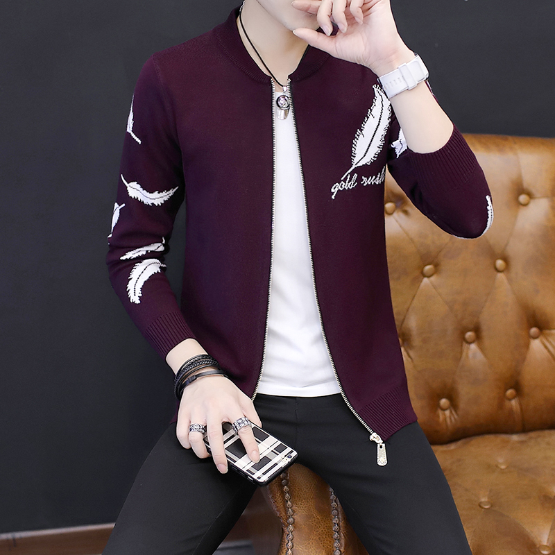 New Fashion 2019 Spring Casual Slim Fit Cardigan Men Autumn Feather Fnitted Stand Collar Zipper Sweater Men Knitwear Coat Male