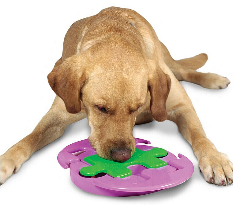 Fat Toy Dogs : Big medium pet dog slider puzzle food bowl educational