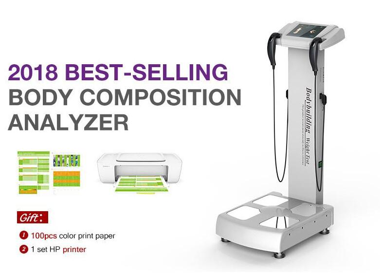 professional fat analysis machine body analyzer/body composition analyzer with printer fast shipping CE/DHL