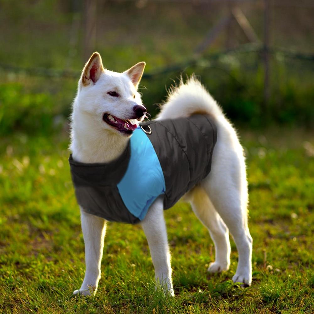 Vinter hund tøj jakke vandtæt varm pet vest jakke chihuahua fransk - Pet produkter - Foto 3