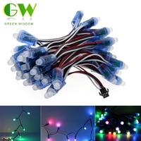 WS2811 Full Color LED Pixel Module IP68 Waterproof RGB LED Module DC12V String Point Lights 50pcs