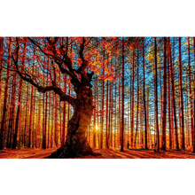 MOYOU 5D Diy Diamond Painting Landscpe Forest Cross Stitch Square Diamond Mosaic Diamond Embroidery handcrafts недорого