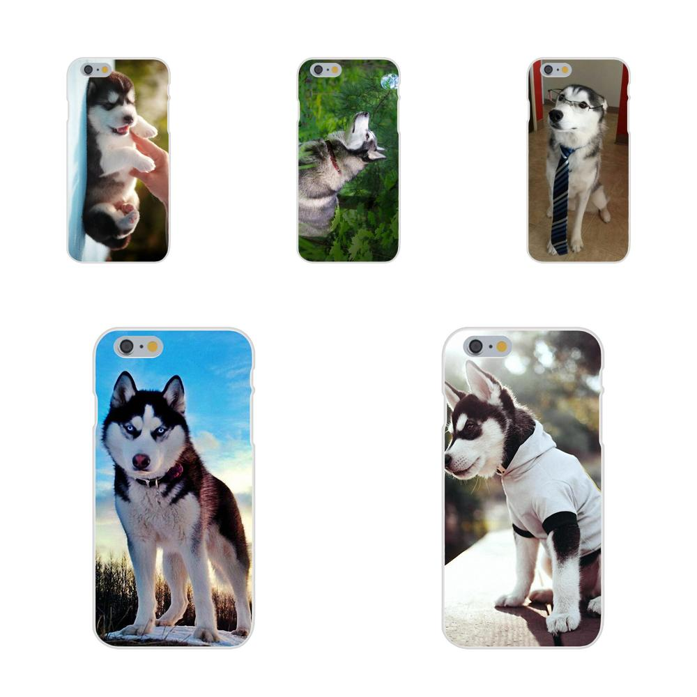 Soft TPU Cute Case <font><b>Siberian</b></font> <font><b>Husky</b></font> Dog For Xiaomi Mi3 Mi4 Mi4C Mi4i Mi5 Mi 5S 5X 6 6X A1 Max Mix 2 Note 3 4 image
