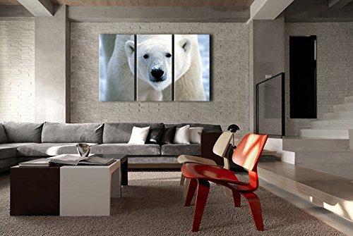 3 piezas pared arte pintura Oso Polar cara Closeup impresiones en lienzo la imagen imágenes animales Envío Directo - 3