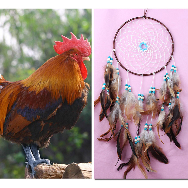 Large Feather Dream Catcher