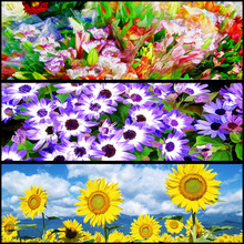 diamond painting flowers 5d diy cross stitch diamond embroidery full round drill Sunflower patterns home decor naiyue 7144 sunflower flowers print draw diamond drawing