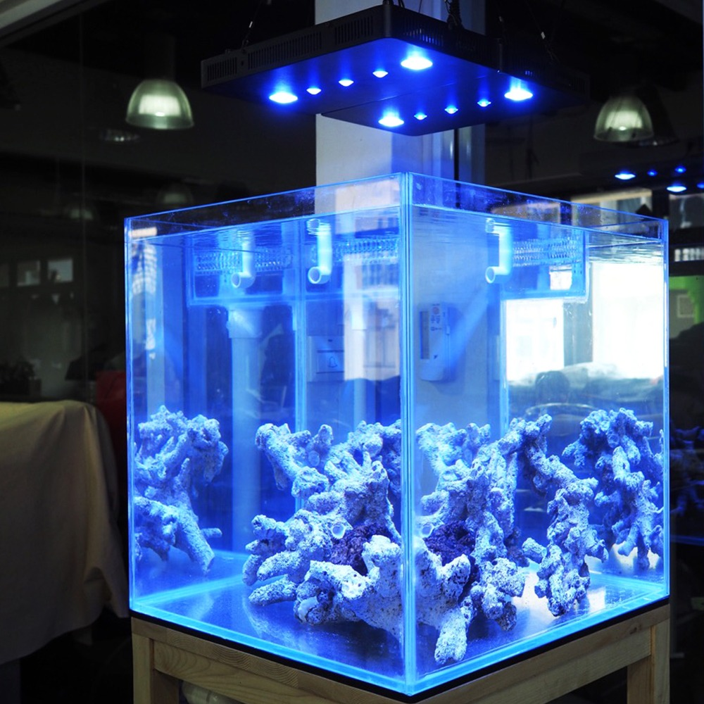 Hot 169W COB+Lens aquarium led lighting Dimmable Full spectrum led aquarium  light for coral