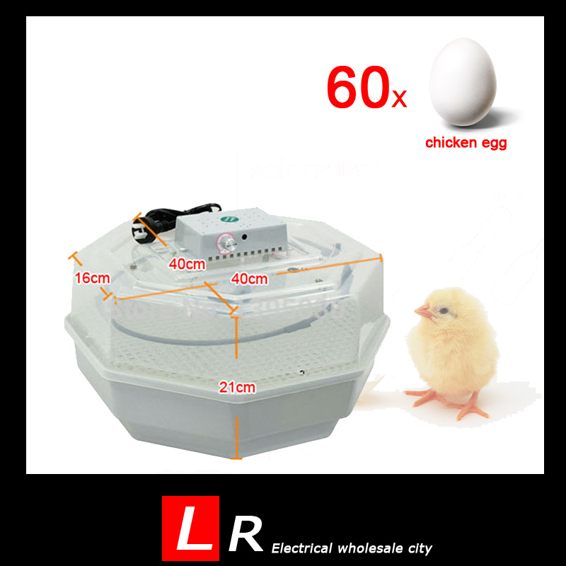 ФОТО 60 Chicken hold digital temperature controller for Automatic egg incubator china 48 trays on sale and cheap incubator thermostat