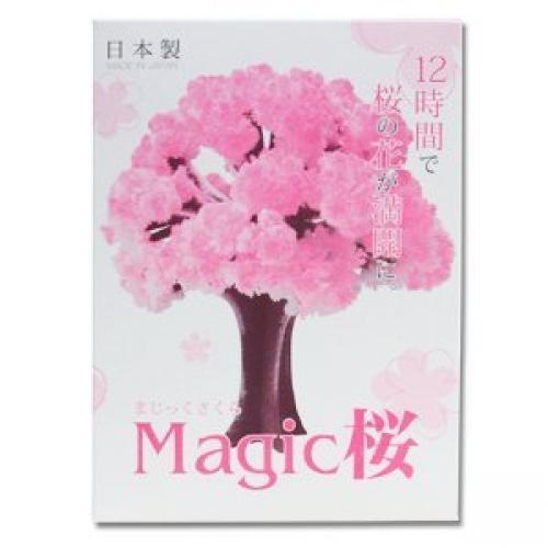 iWish 14x11cm roz mare creștere Magic hârtie copac Sakura Magic în - Produse noi și jucării umoristice