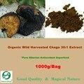 Siberian Chaga Mushroom 30: 1 Экстракт Порошок 1000 г-Органический Экстракт Polyose